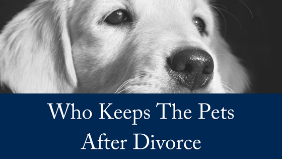 Who Keeps The Pets After a Divorce?